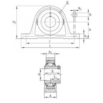 INA RASEY2 bearing units