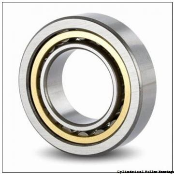 35 mm x 62 mm x 36 mm  NKE NNCF5007-V cylindrical roller bearings