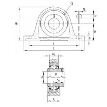INA RAKY1 bearing units