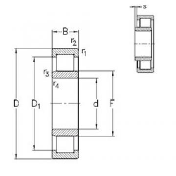 55 mm x 100 mm x 21 mm  NKE NU211-E-TVP3 cylindrical roller bearings