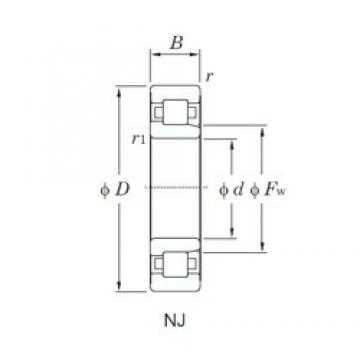 20 mm x 47 mm x 14 mm  KOYO NJ204R cylindrical roller bearings