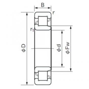240 mm x 440 mm x 72 mm  NACHI NJ 248 cylindrical roller bearings