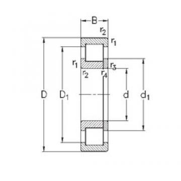 45 mm x 120 mm x 29 mm  NKE NUP409-M cylindrical roller bearings