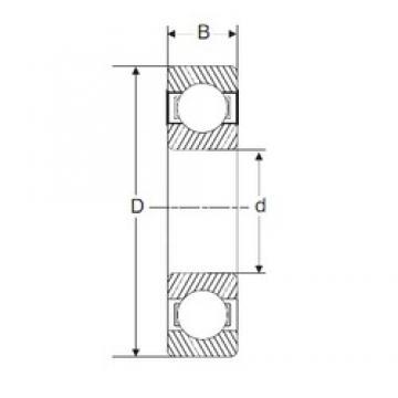215,9 mm x 292,1 mm x 38,1 mm  SIGMA XLJ 8.1/2 deep groove ball bearings