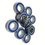 Chrome Steel Deep Groove Ball Bearing Taper/Tapered Roller Bearing Self-Aligning Ball Bearing 6204 6204RS 6204zz