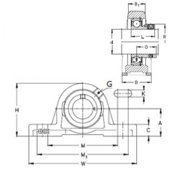 NKE RASE55 bearing units #3 image