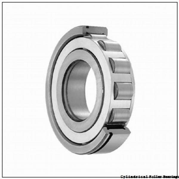 25 mm x 62 mm x 17 mm  FBJ NU305 cylindrical roller bearings #2 image