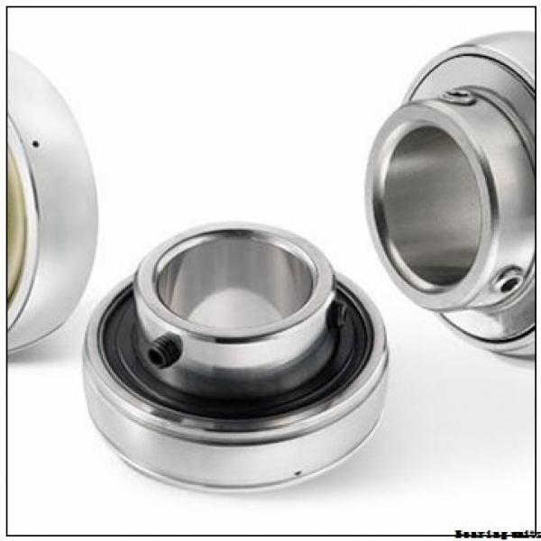 INA RAKY1 bearing units #1 image