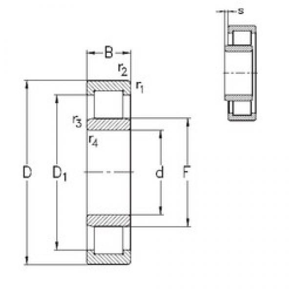 110 mm x 240 mm x 50 mm  NKE NU322-E-M6 cylindrical roller bearings #3 image