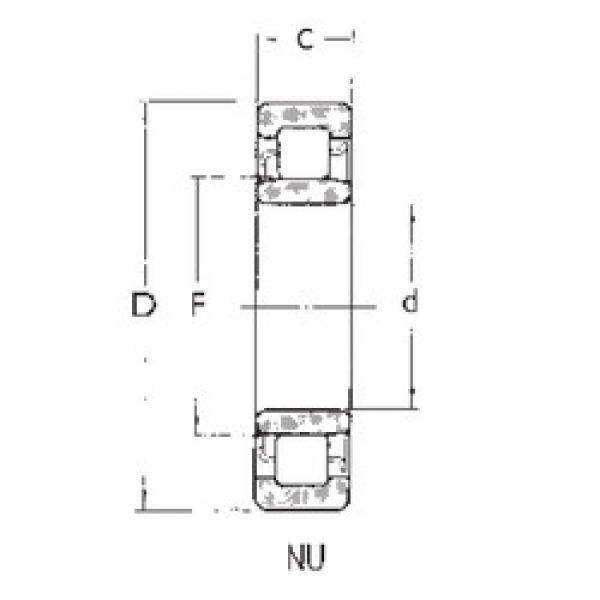 25 mm x 62 mm x 17 mm  FBJ NU305 cylindrical roller bearings #3 image