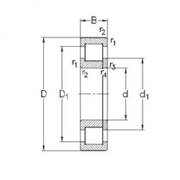 75 mm x 160 mm x 37 mm  NKE NUP315-E-MA6 cylindrical roller bearings #3 image
