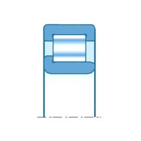 120,000 mm x 260,000 mm x 110,000 mm  NTN NJ324EDF cylindrical roller bearings #3 image